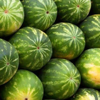 top health benefits of watermelon