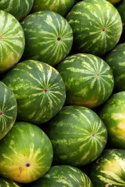 Top Health Benefits of Watermelon That Might Surprise You!