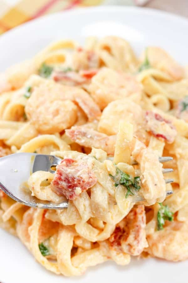 Creamy Shrimp Pasta with Sun Dried Tomatoes Recipe