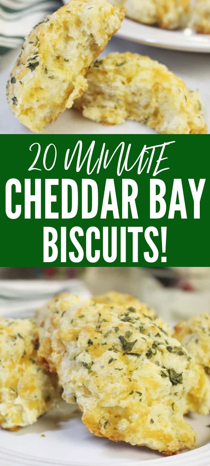 the best cheddar bay biscuits