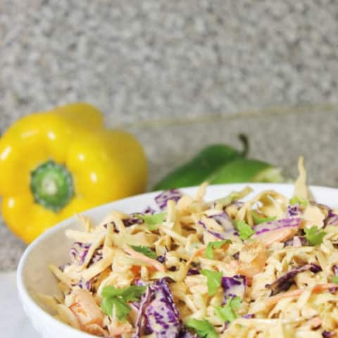 mexican slaw in a bowl with peppers behind it