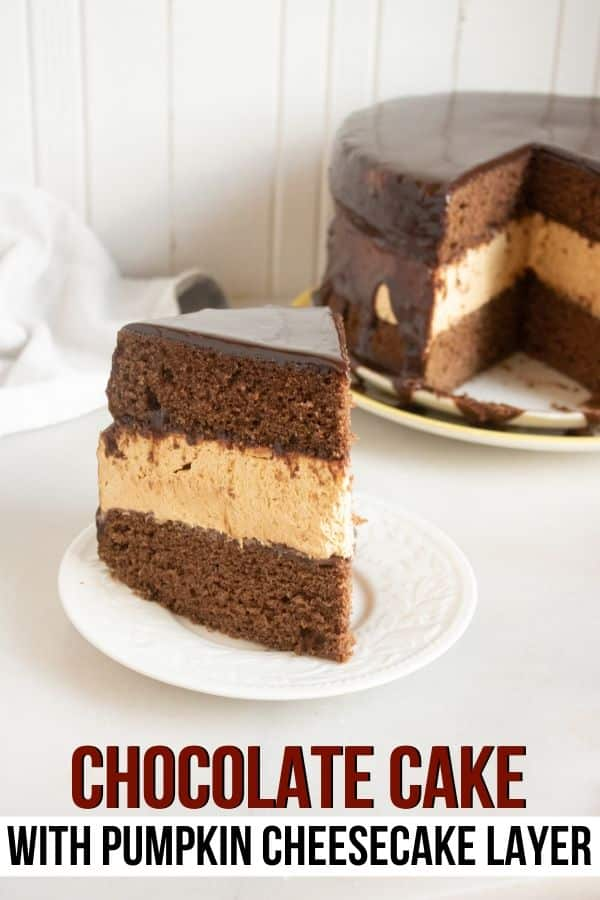 Chocolate Pumpkin Cheesecake Cake