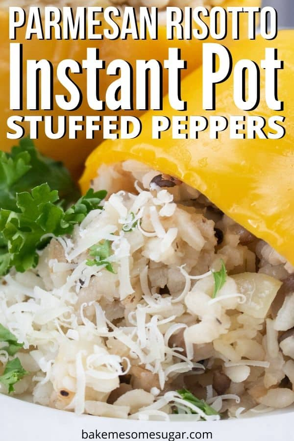 instant pot vegetarian recipe