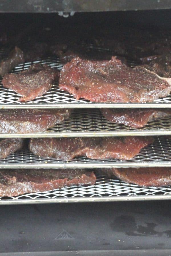 deer jerky in air fryer oven