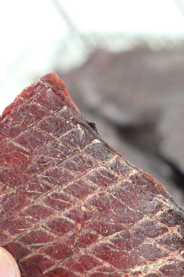 Air Fryer Venison Jerky Recipe