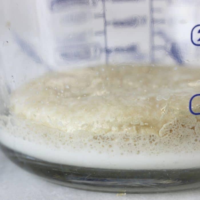 yeast mixture