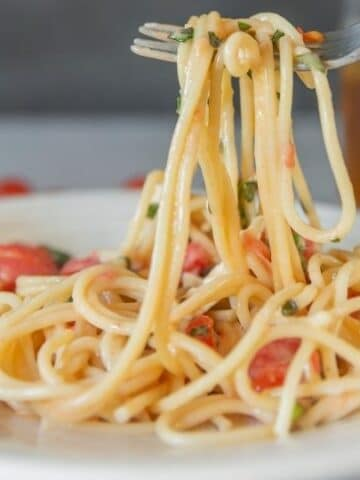 fork with brie and tomato pasta on a plate