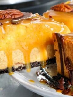 slice of a turtle pumpkin cheesecake