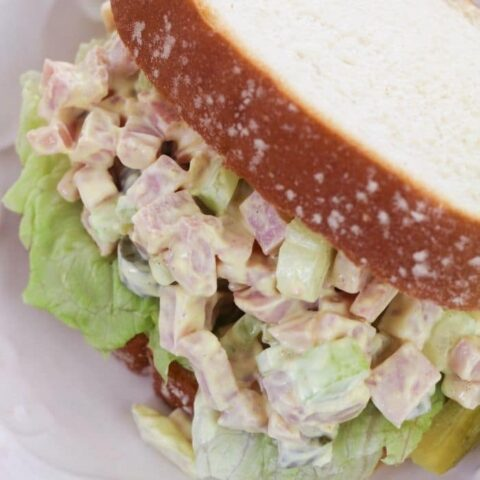 ham salad sandwich close up picture on white plate