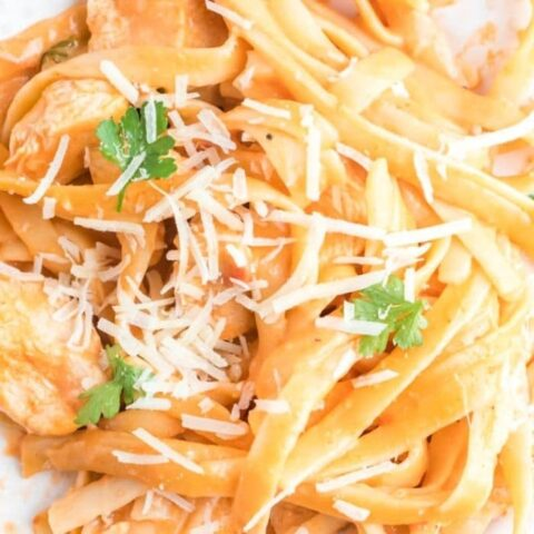 creamy pasta on plate with parmesan cheese on top