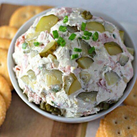 close up overview of pickle dip