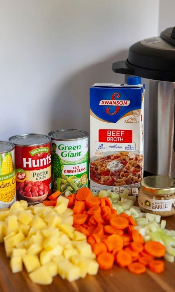 vegetable soup ingredients on counter by Instant Pot