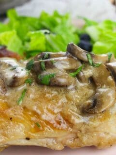 pan seared chicken with gravy sauce
