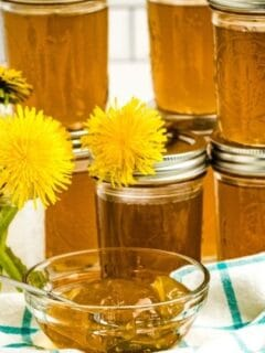 dandelion jelly in jars on counter