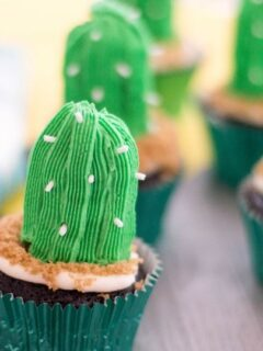 cactus cupcakes on a counter
